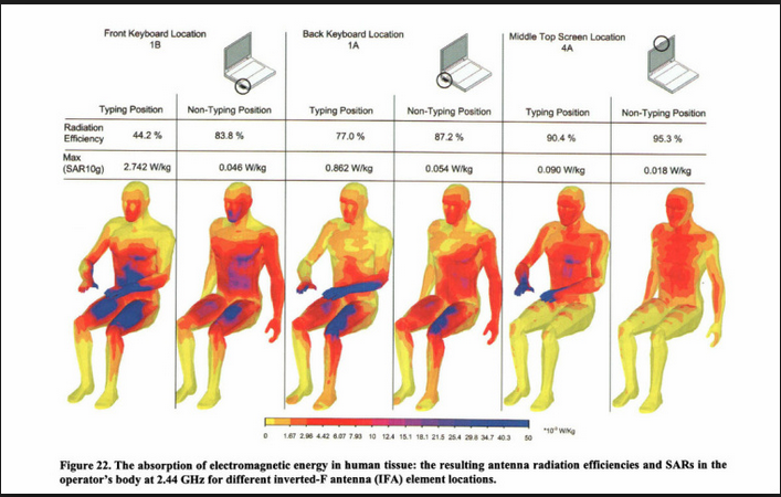 cell phone effects on the human