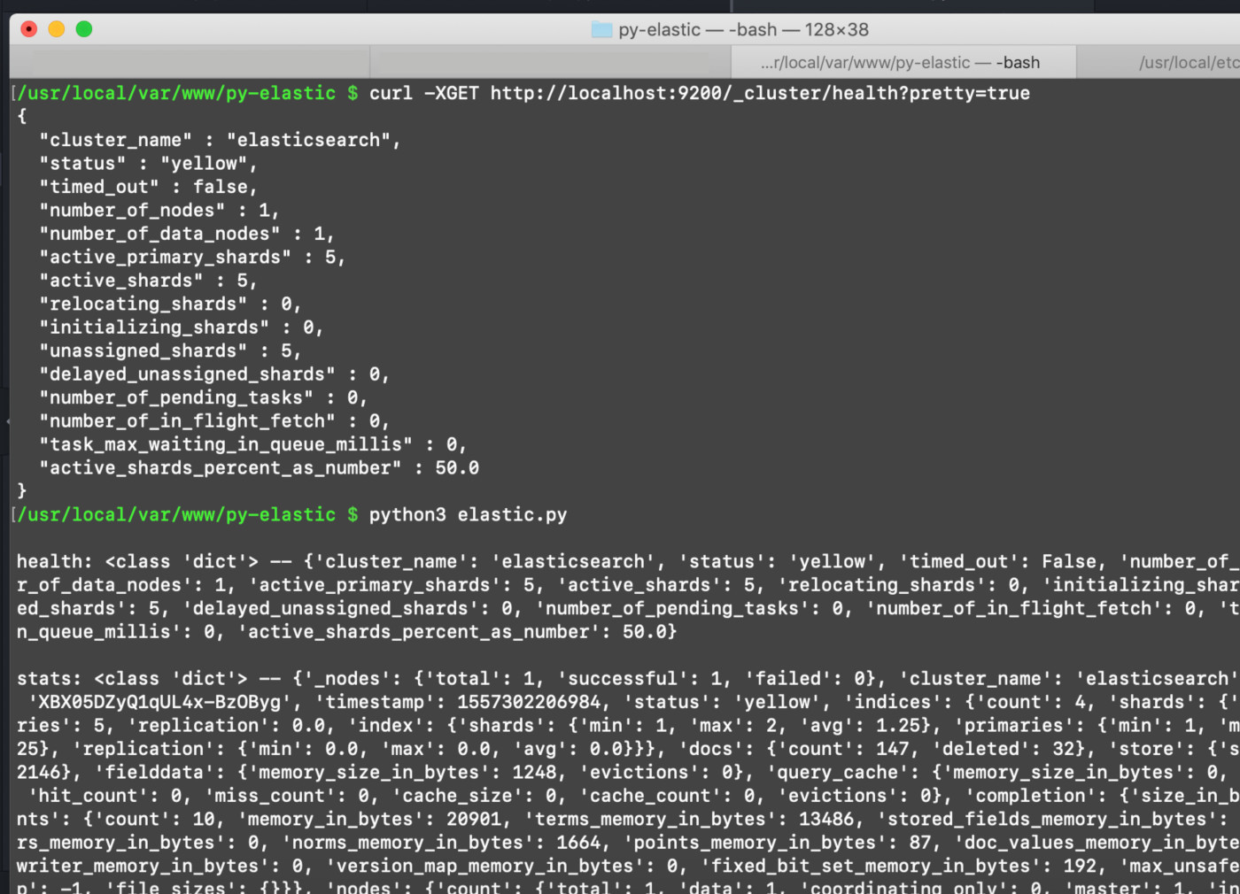 Screenshot of a terminal running a Python script that calls the cluster.health() and cluster.stats() methods