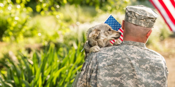 Look after or foster military family's pets