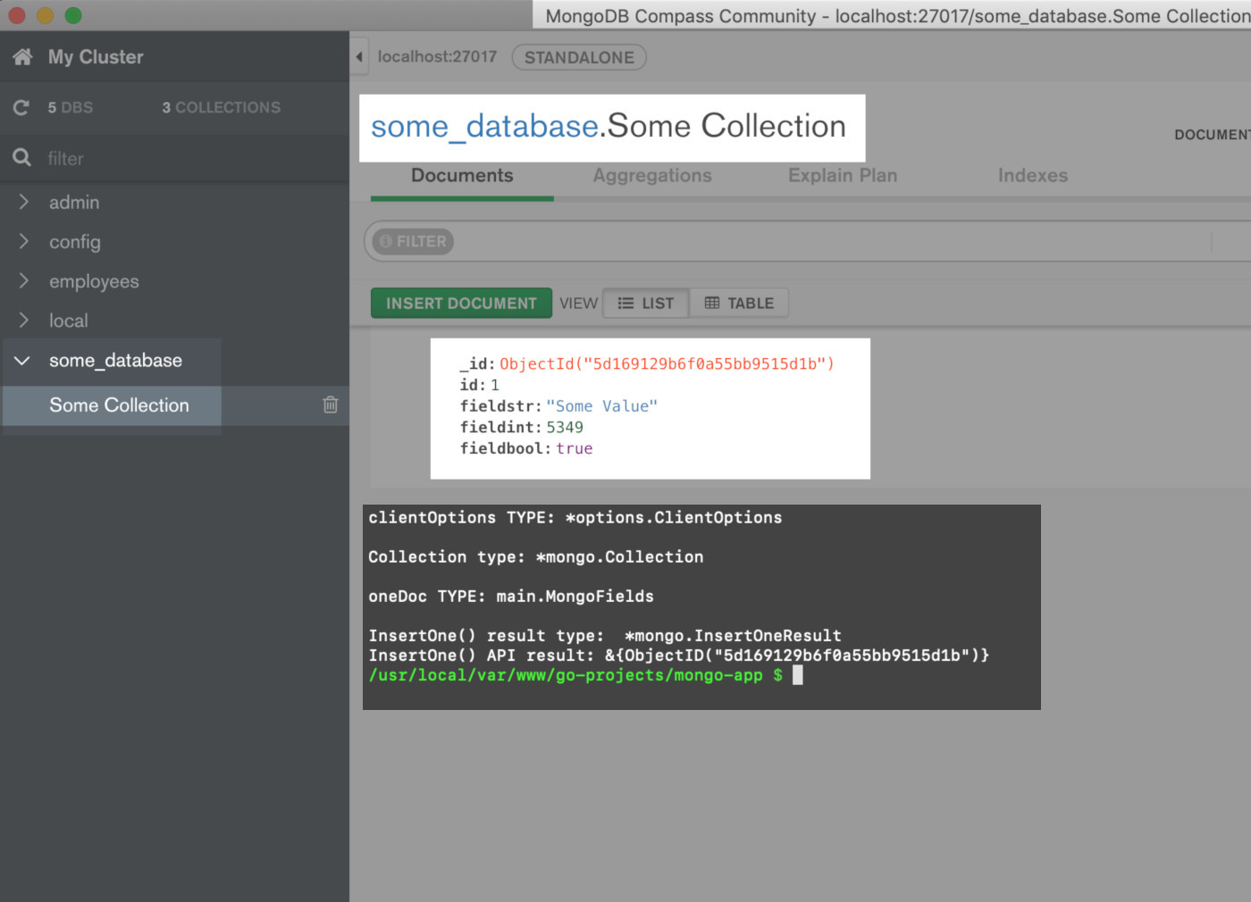 Screenshot of the MongoDB Compass UI getting the inserted document using Golang driver