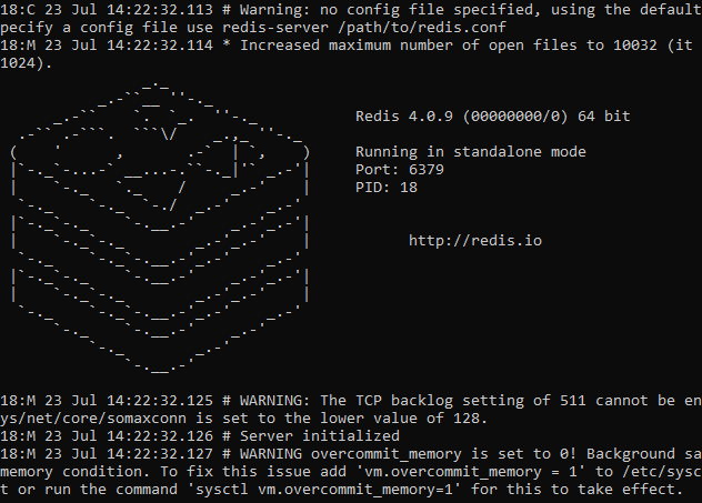 Successfully started the Redis sever
