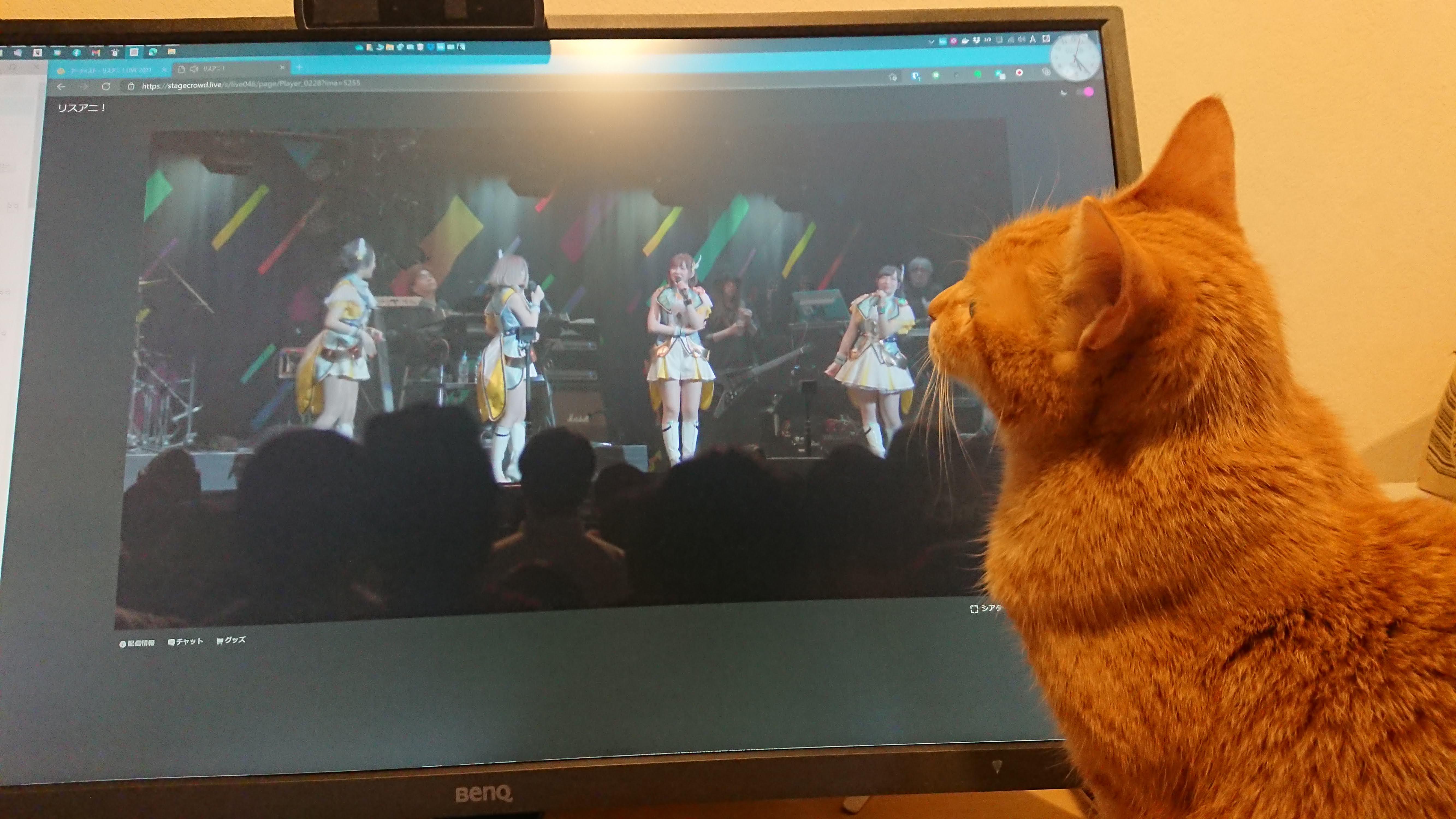 [写真]ライブを一緒に観ているドーラ