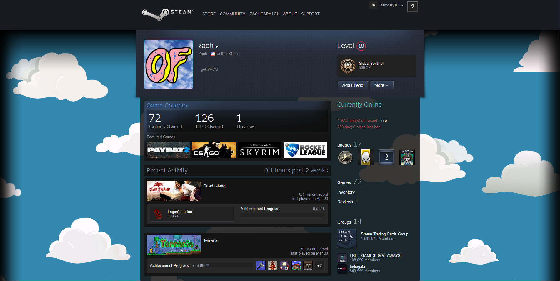vac banned account with 72 games