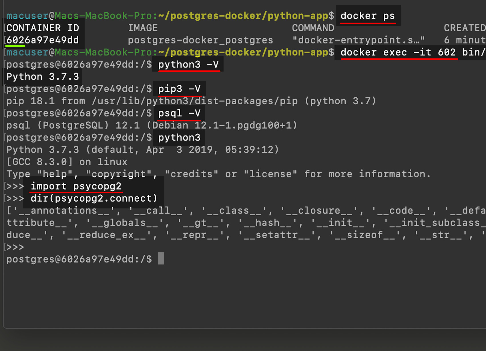 Using docker exec to interact with PostgreSQL container and test Python