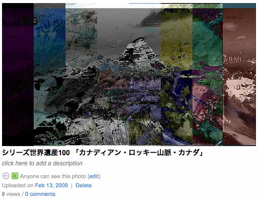 flickr img