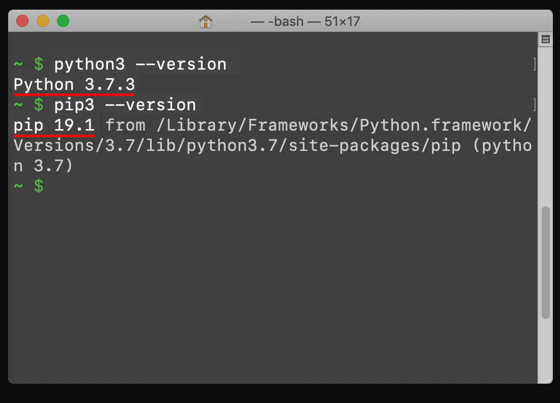 Screenshot of a UNIX terminal getting the Python3 and pip3 Package Manager Versions