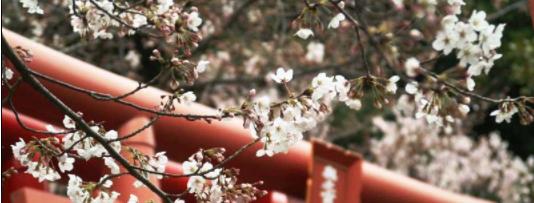 の 条件 国家 日本 理想 理想国家日本の条件│みやもとさとしブログ 幸福実現党