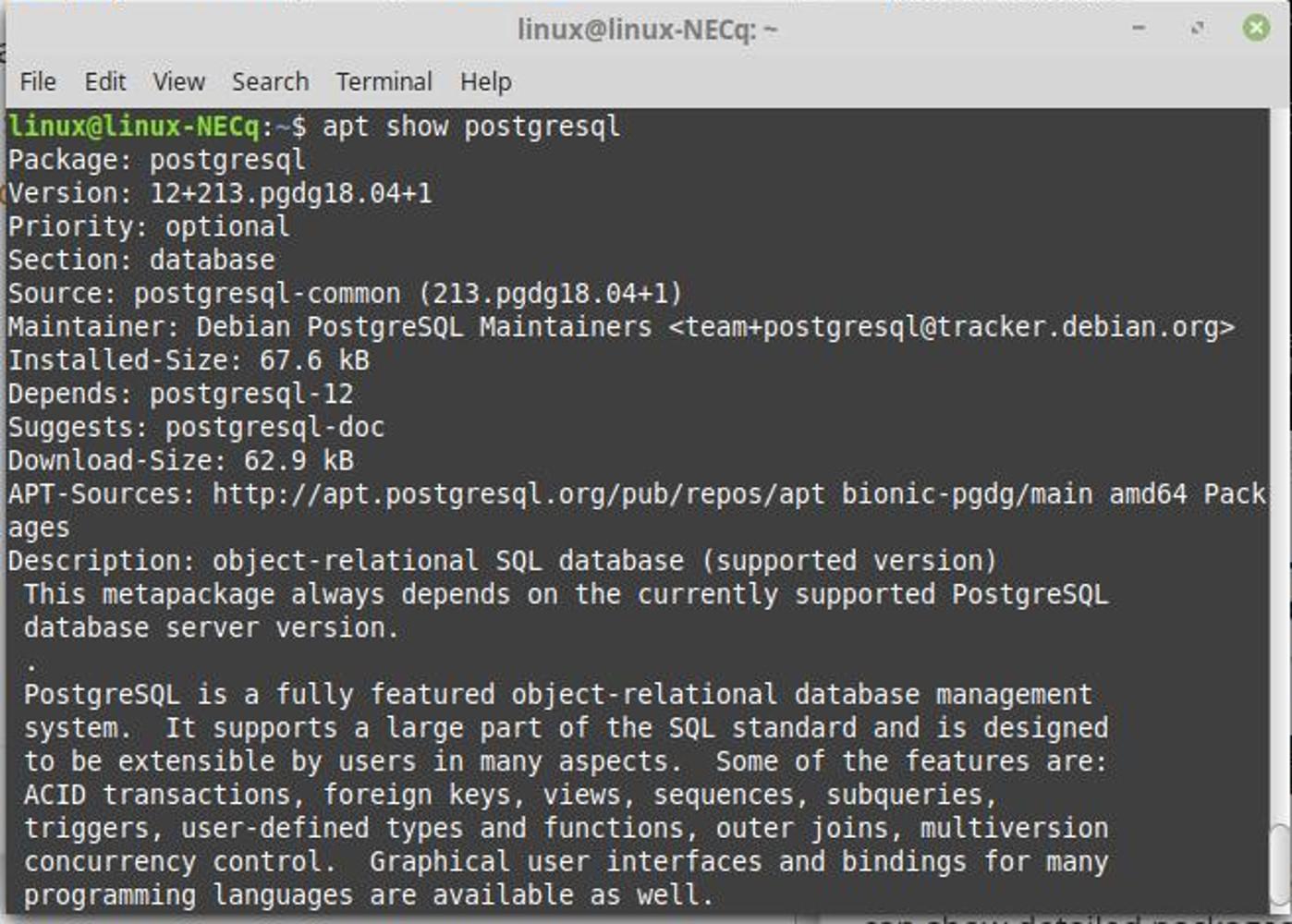 Screenshot of the terminal show PostgreSQL