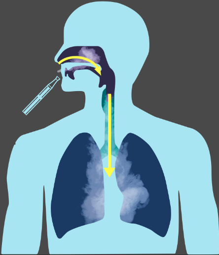How to inhale your vapor