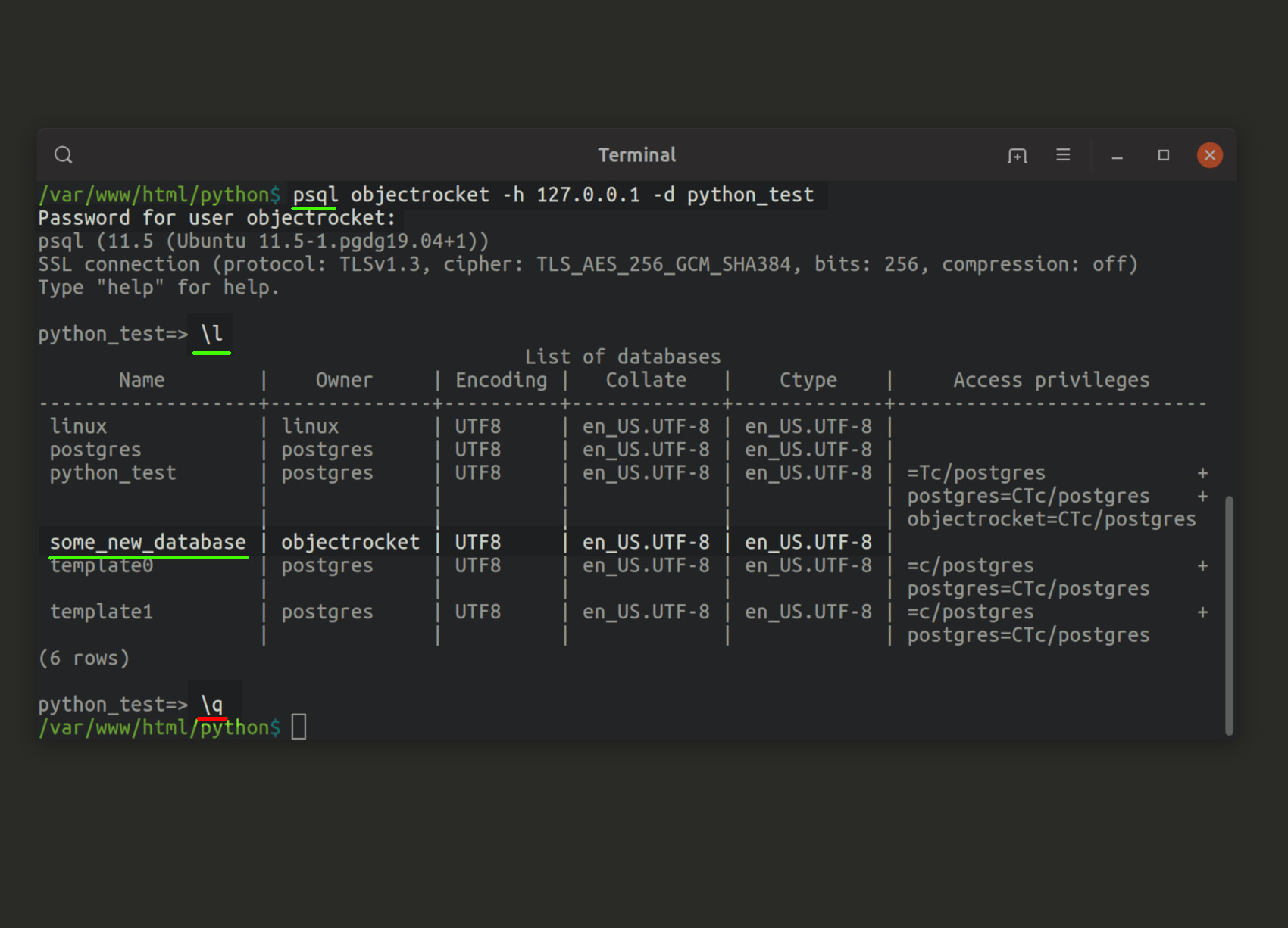 Screenshot of psql terminal command line listing all PostgreSQL databases