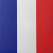 """French flag"