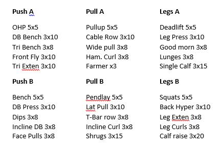 push pull legs routine pdf