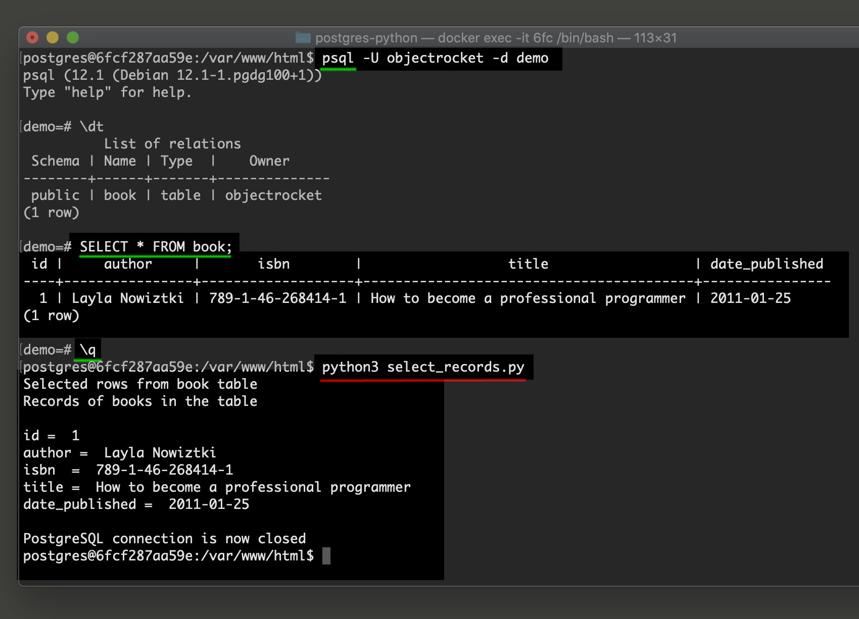 Screenshot of PostgreSQL CRUD example in Python for psycopg2 adapter
