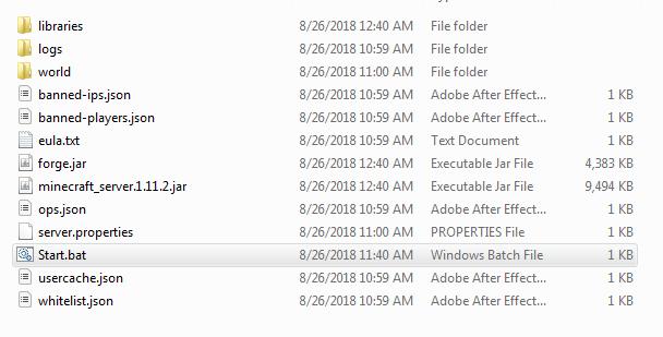 1 11 2 Forge Server Won't Start