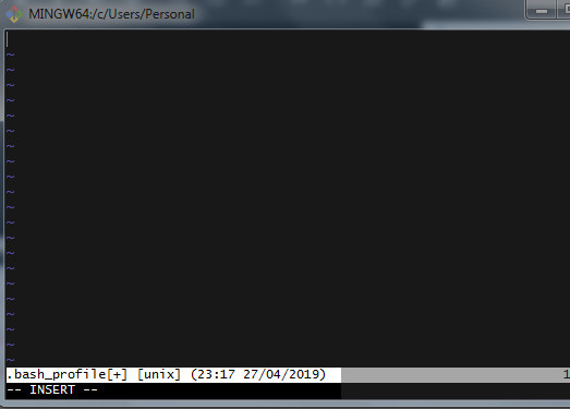 Screenshot of the VIM editor in Hyper Terminal editing the .bash_profile file