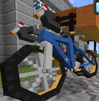 PokeCycle Mod