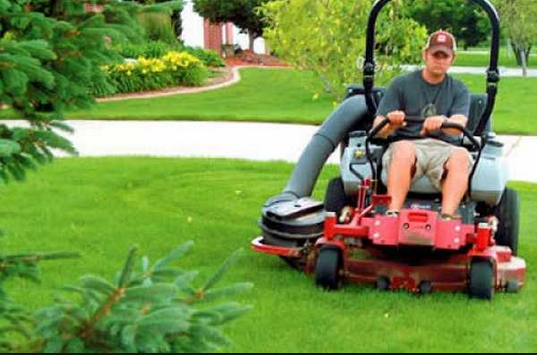 in case you are able to have the lawn software and become a member in the software exactly where youre able to obtain offers that will meet the want of