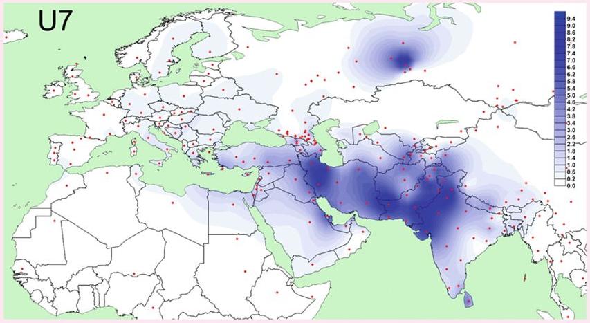 Haplogroup U7