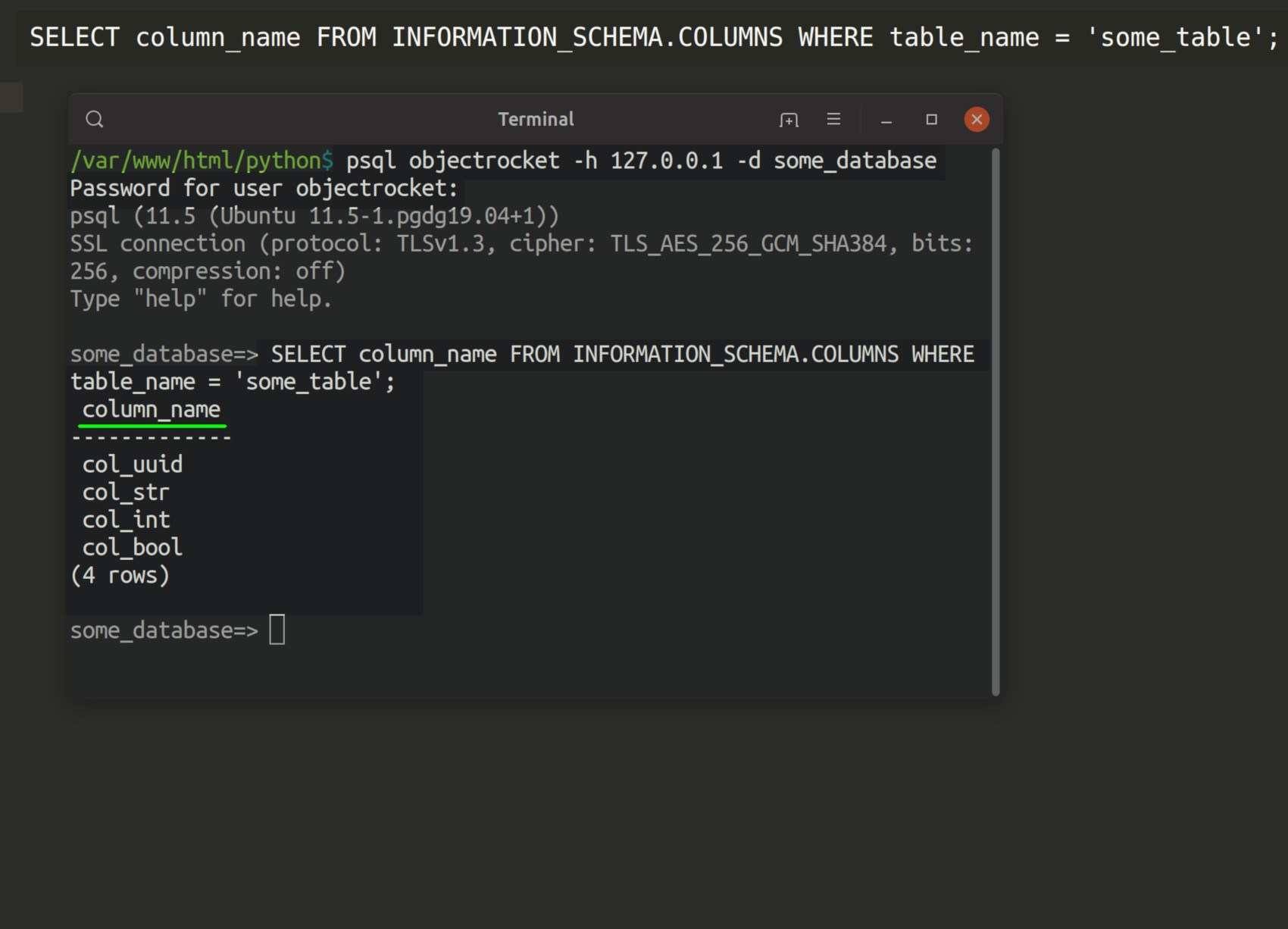 Screenshot of psql command-line in a terminal getting the column names of a PostgreSQL table