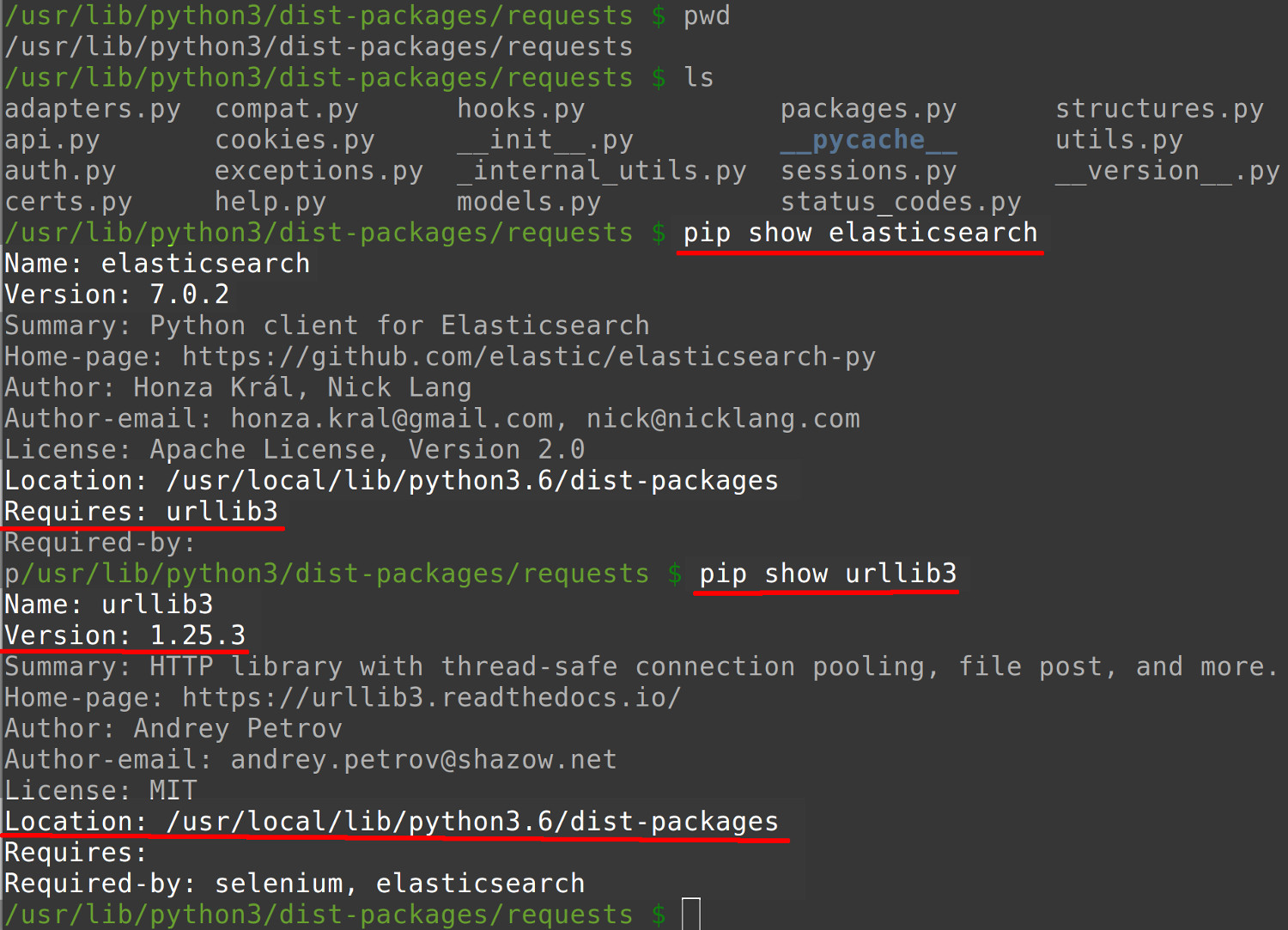 Screenshot of a terminal window getting information about PIP Python packages