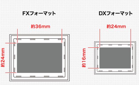 キヤノンとニコン APS-Cサイズ[DXフォーマット] フルサイズ[FXフォーマット]の違い 13