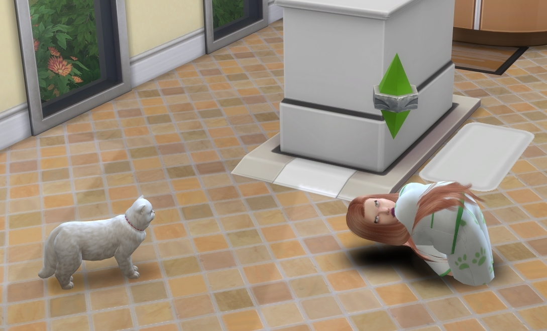 Combined list of most pet issues that simmers are having