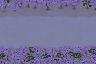 b7ca4357f5a39566c0423c9e397bec7e.png