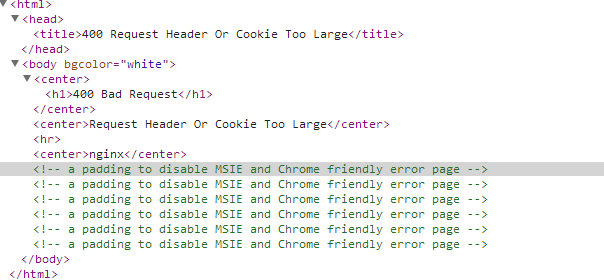 Error 400 Request Header Or Cookie Too Large