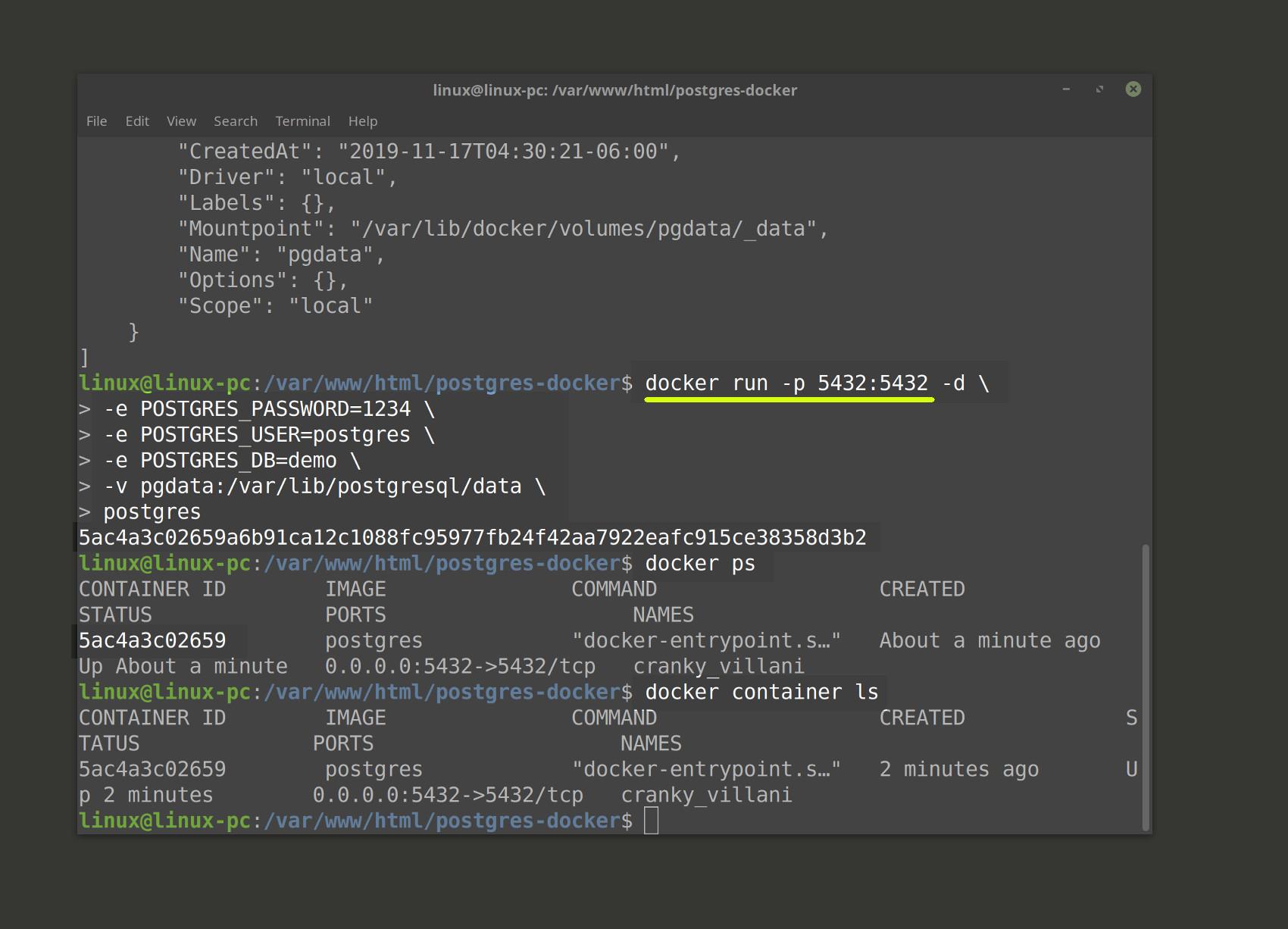 Screenshot of docker run command to run Postgres container with port binding