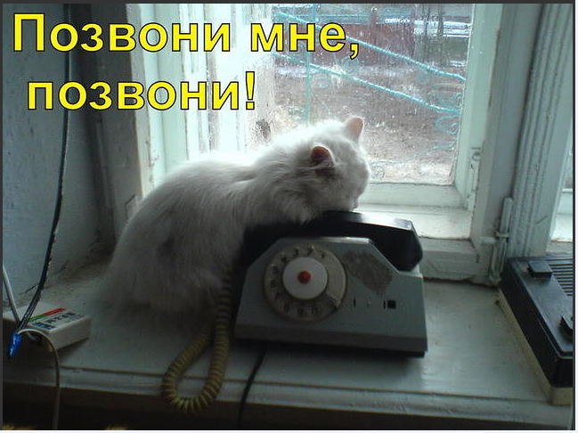 Открытка мая, открытки не могу дозвонится к тебе