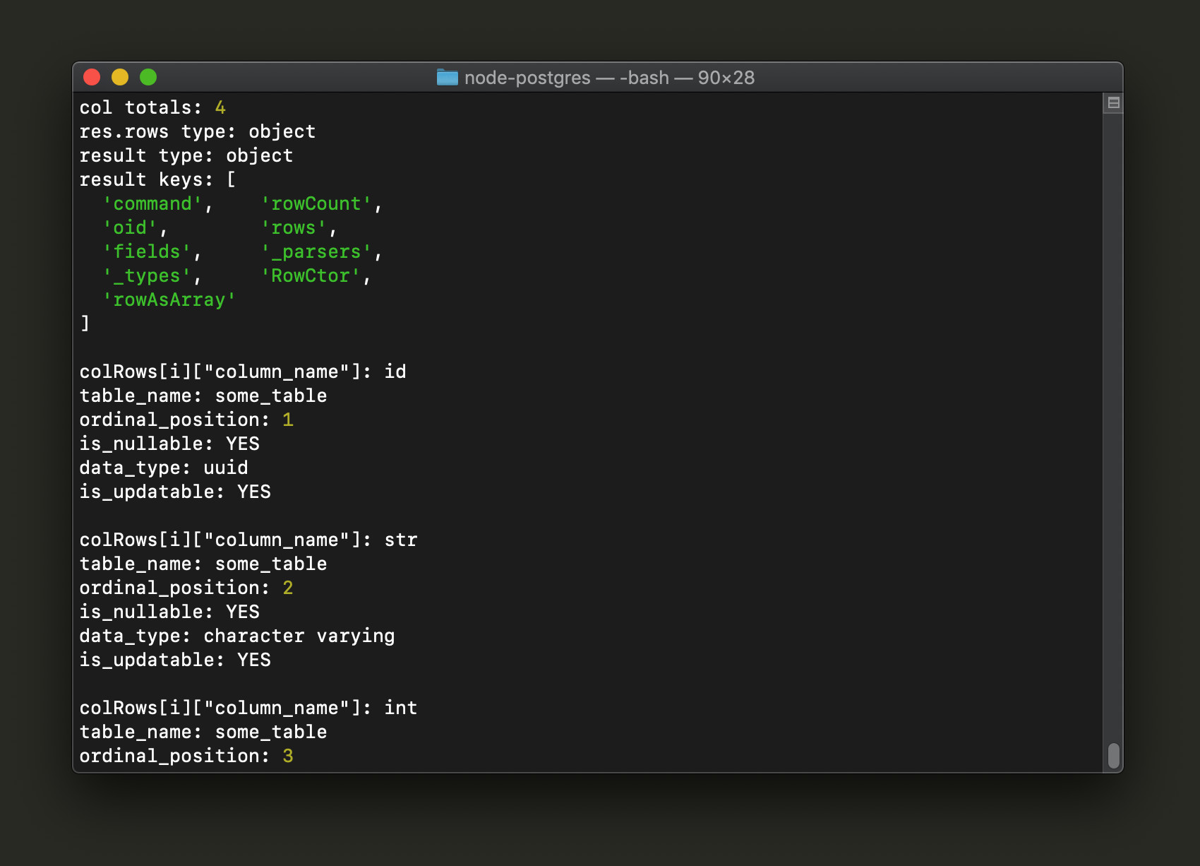 Screenshot of Node PostgreSQL column names in terminal