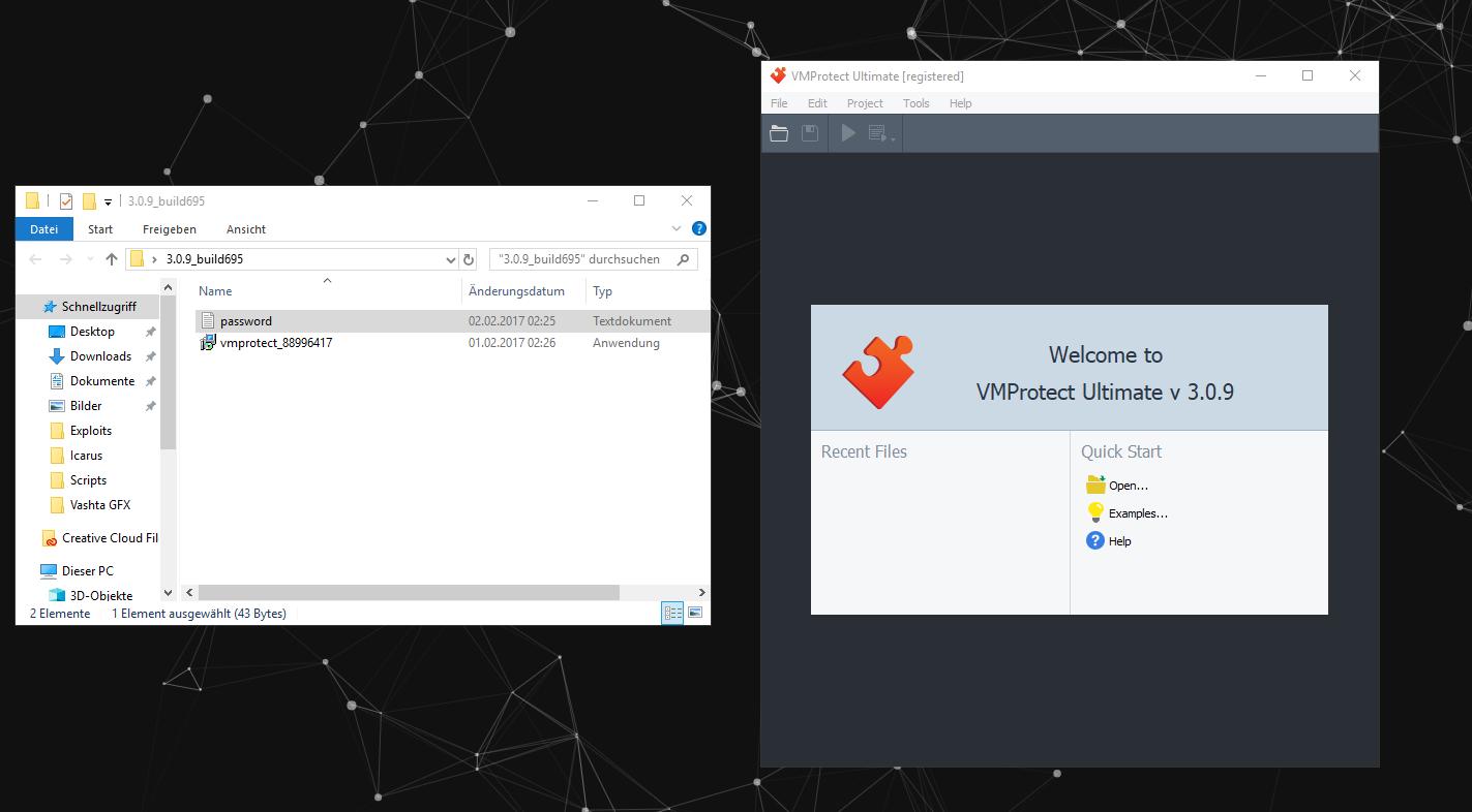 Release] VMProtect Ultimate v3 0 9 [CRACK]