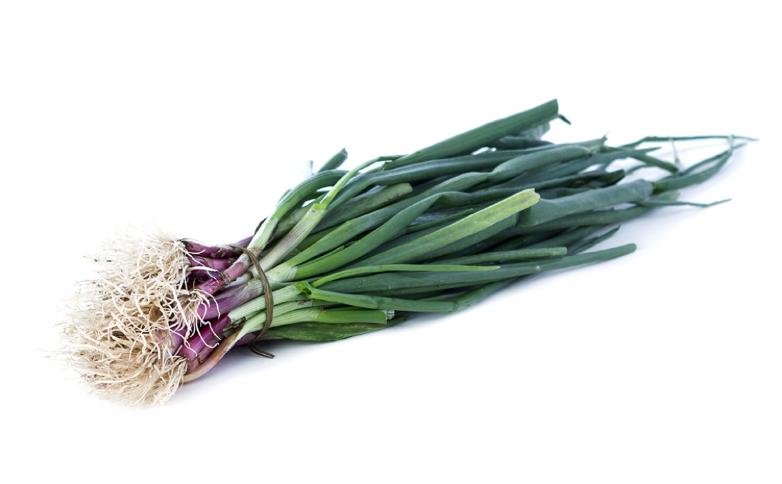 imagen verdura