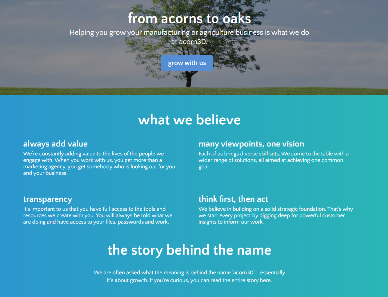 acorn30 example: About Us Page