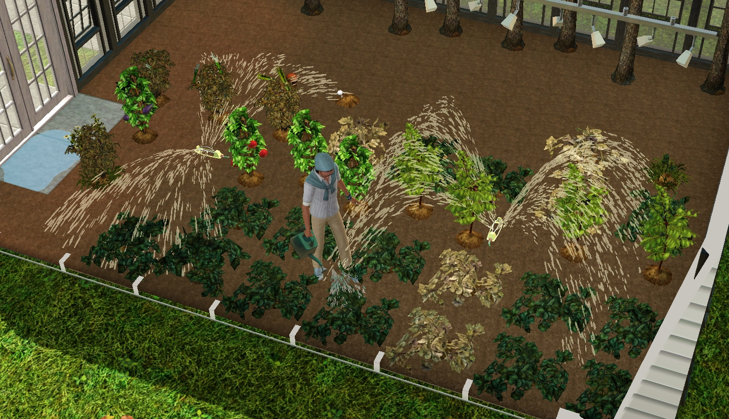 Nature\'s soil rugs + Sprinklers.... — The Sims Forums