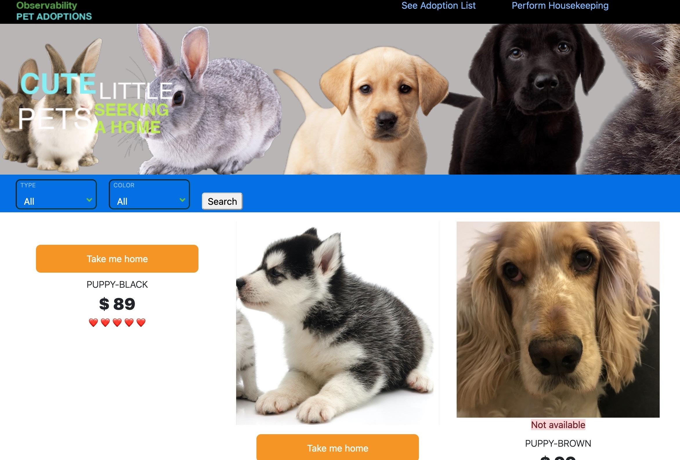 Pet Site