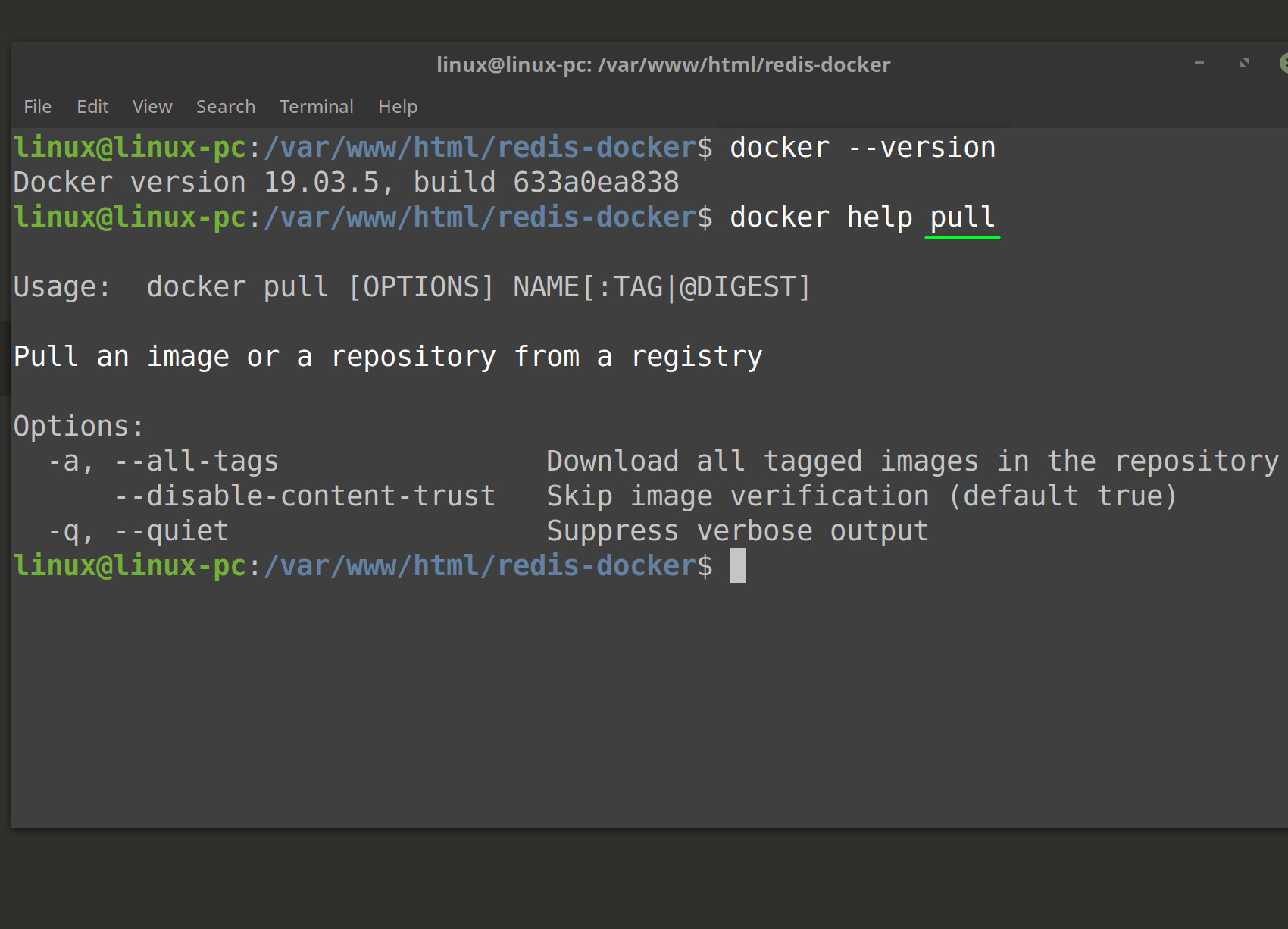 Screenshot of Docker --version and help commands in a Linux terminal