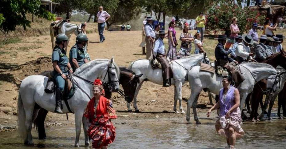 caballo andaluz en romería tanto con los romeros como con la guardia civil