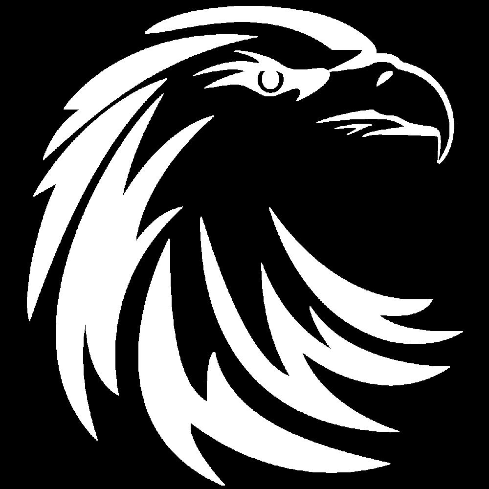 Hawk Servers